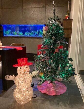 クリスマスツリー;