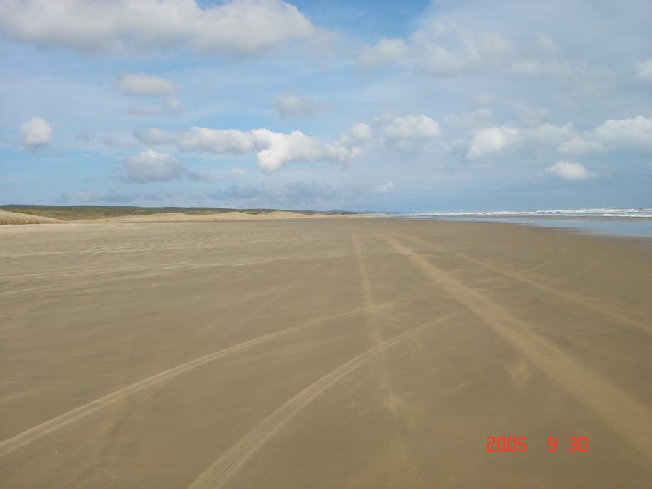 0509304390マイルビーチ.JPG